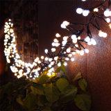 Zeichenkette-Licht des Kracher-LED für im Freien