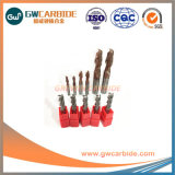 HRC55 10X25X75 Carbide Micro Final Mills