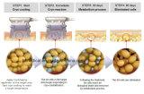 Carrocería popular que forma el equipo de Cryo para la disolución gorda