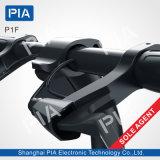 P1f 12のインチ36Vセリウムの黒カラーの折る都市電気バイク