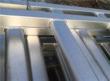 Panneaux de courants de corral à billes galvanisées à chaud