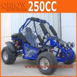 자동 1개의 시트 250cc를 간다 Kart, 교차하는 Kart 골라내십시오