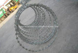Collegare a fisarmonica del rasoio, recinto di filo metallico del rasoio, filo del rasoio