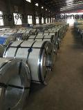 Bobinas galvanizadas Prepainted fonte do aço da fábrica/bobinas aço do Galvalume