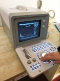 Veterinary Laptop Ultrasound & Horse Vet Gravidez Ultrassom Scanner