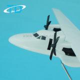 Il piccolo modello dell'aeroplano della resina ha lasciato L-410