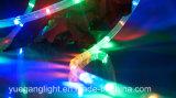 Cer u. RoHS anerkanntes 10m 24LED/M Seil-Licht für im Freiengebrauch