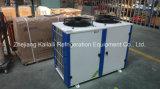 중국 제조자 공장 가격 저온 저장을%s 신비한 일폭 Refigeration 압축기 단위