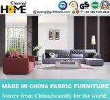 Sofá moderno de la tela del diseño simple para la sala de estar casera (HC513)