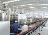 Conservante poco costoso della JM che fa la macchina per la lavorazione del latte della noce di cocco da vendere