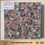 Lastra includente verde del controsoffitto della cucina del granito dei materiali da costruzione della farfalla