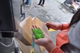 水平水リングの放出機械ラインにペレタイジングを施すプラスチックPVC
