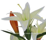 중나리 (XF30029)의 인공 플라스틱 또는 실크 꽃 단 하나 줄기