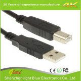 USB2.0 NOIR de haute qualité Am à BM Câble d'imprimante