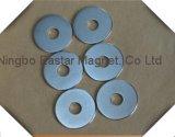 Permanente Magneet 005 van de Ring van het Neodymium