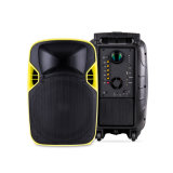 12 polegadas Professional Portable LED Projection Speaker Box