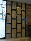 فندق مشروع [هلّ] ردهة [ستينلسّ ستيل] خلفيّة جدار زخرفيّة معدن شامة نوع ذهب لون