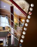 Railing нержавеющей стали деревянные и орнамент railing (HR1377)