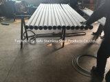 310S Fabrikant van de Staaf van het Roestvrij staal AISI de Holle