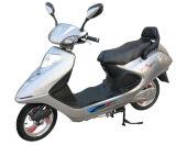 Vélo électrique (2) mouvements (BDM-062Z)