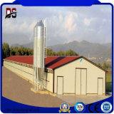 Chambre de poulet de structure métallique de constructions de bâti en acier