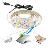 Striscia chiara dell'indicatore luminoso 5V RGB di umore della lampadina della carica del USB della TV