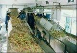 A linha de produção completa de concentrado de sumo de maçã
