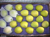 Shandong poire