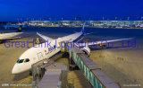 Von China nach Madrid ist die Professionoanl Air Shipping