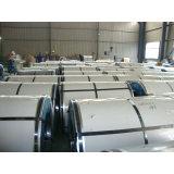 Galvanisierte Stahl-Spulen