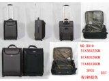Preiswerter Preis neues Arivaly Polyester-Laufkatze-Gepäck mit Qualität