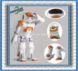 A alta precisão de plástico Fabricação Personalizada Robô CNC & CNC do braço do robô