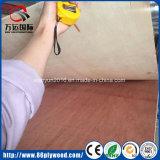 Furniture를 위한 제조소 Poplar Okoume Veneer Commercial Marine Plywood
