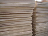 EVA Cork Sheets, EVA Foam Sheets (호랑이 printing)