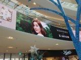 Pubblicità esterna P10 LED per lo schermo del negozio e dell'ospedale della farmacia