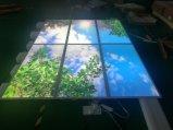 Van het LEIDENE van het dakraam het Licht Comité van het Plafond voor de Verlichting van het Bureau
