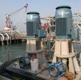 중국 고품질 수직 터빈 수도 펌프