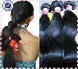 Chaud 100% de la beauté des cheveux brésiliens vierge non traités
