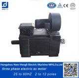 Geschwindigkeit variabler 180kw 60Hz elektrischer Wechselstrommotor