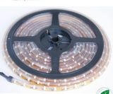 LED CMS haute luminosité 3528 Strip Light