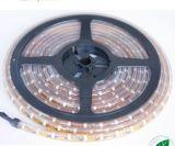 Luz de tira de SMD3528 LED