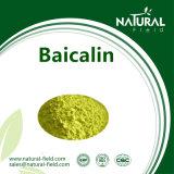 Pó de Baicalin, extrato CAS de Baicalin: 100647-26-5 (27462-75-5)