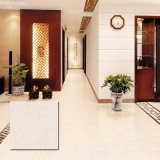 Pulido de baldosas de porcelana Floor (VPM6503 600X600m, 800X800mm)