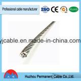 Conducteur permanent du constructeur ACSR de la Chine Huzhou/câble renforcé par acier en aluminium de conducteur