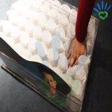 매트리스 침대 봄 포켓 덮개를 위한 PP 비 길쌈된 직물