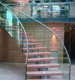 Las escaleras de cristal curvadas del pasamano de la barandilla de Frameless/anunciaron las escaleras helicoidales