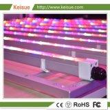 プラント成長のための専門の照明設備