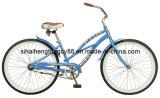 شاطئ طرّاد درّاجة مع [كستر برك] ([ش-بّ076])