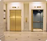 Passenger poco costoso Elevator/Highquality 800kg Passenger Elevator