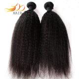 8Aバージンのマレーシアの毛のもつれの自由な取除く自由な高品質の毛